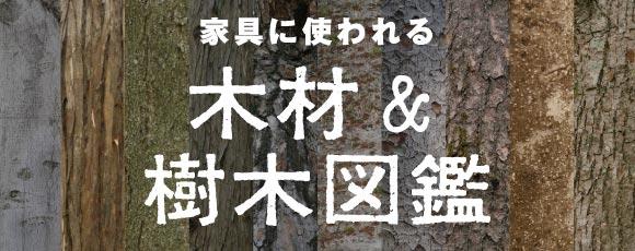 家具に使われる樹木図鑑