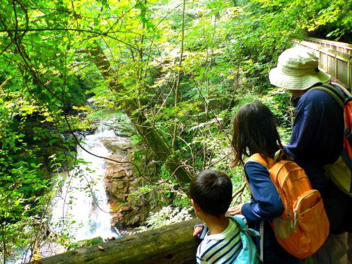 """山や森を""""より安全快適に楽しむ""""――デイハイキングの推奨装備(持ち物)と服装の基本"""