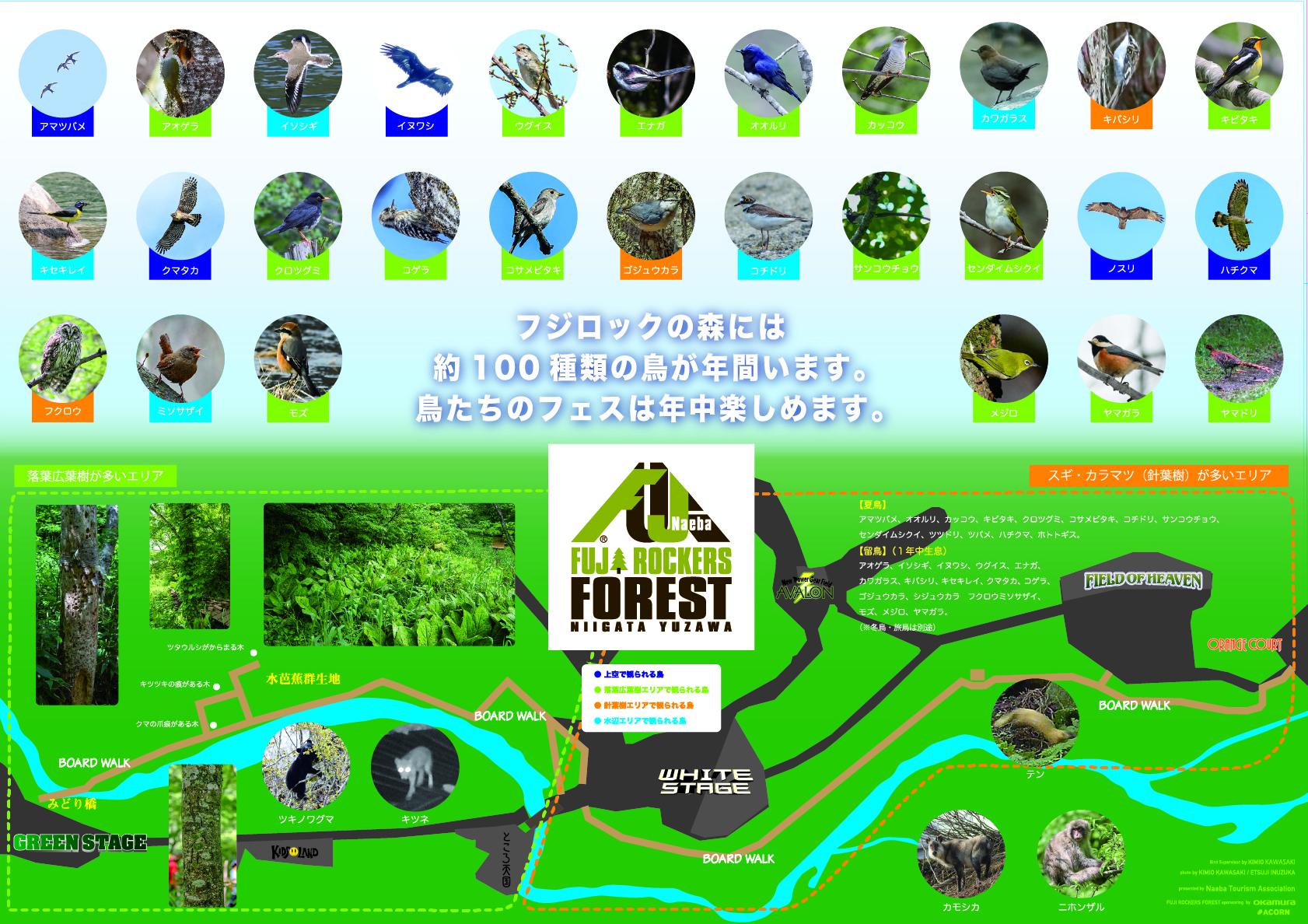 フジロックの森 バードマップ ver1