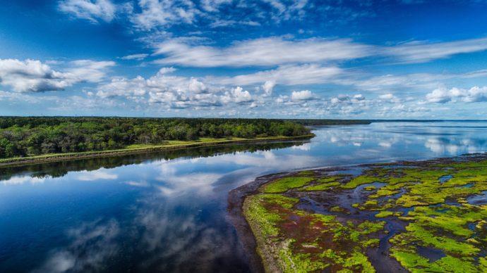 生物多様性の宝庫――「ウェットランド(湿地帯)」という貴重なフィールド